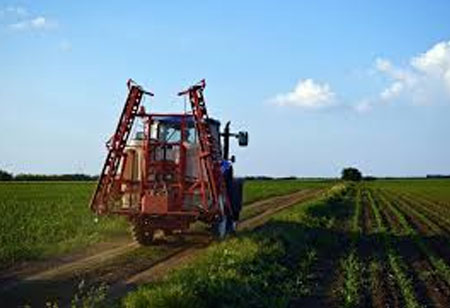 Can Agriculture Benefit from Machine Vision?